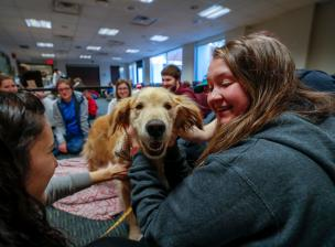 Happy group of students interacting with a therapy dog